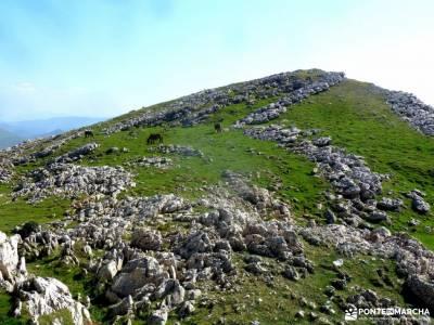Selva Irati-Pirineo Navarro-Puente del Pilar; amistades turismo activo zapatillas para andar cercedi